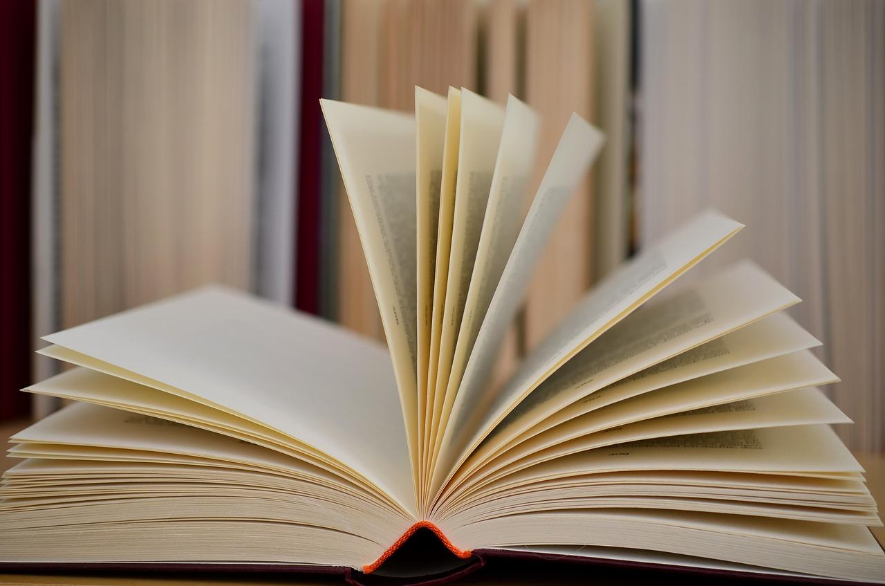 Cum sa gasesti o editura care sa iti publice cartea?